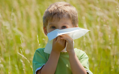 """Understaing Pertussis – """"Whooping Cough"""""""